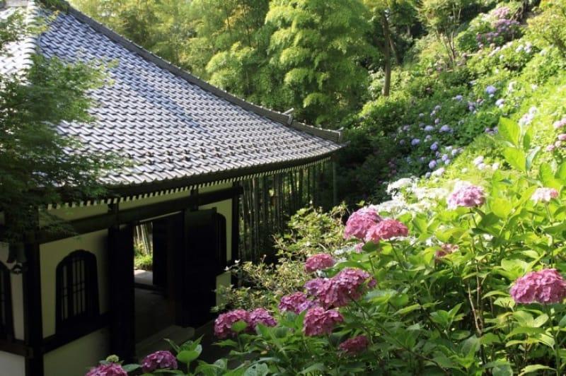 鎌倉観光のおすすめ時期は?冬は寒い?