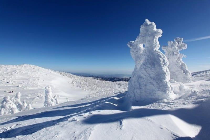 冬の絶景を楽しもう!〈蔵王温泉スキー場〉