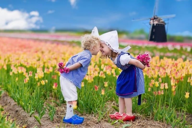チューリップはもともとオランダの花ではない?!