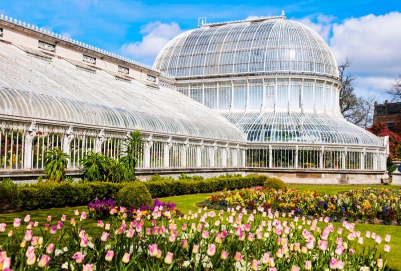 南国の花々がお出迎え・亜熱帯作物支場