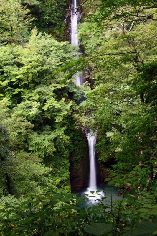 ハイキングがてら滝を見に行こう!
