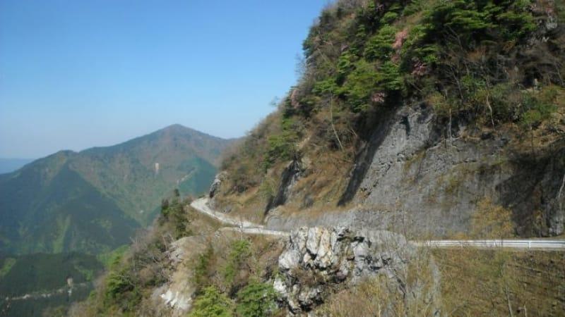 94334:日本最長の林道もあります